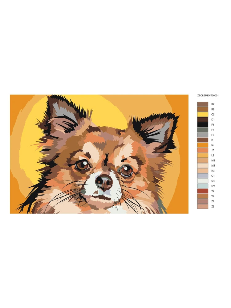 Chihuahua - painting by numbers