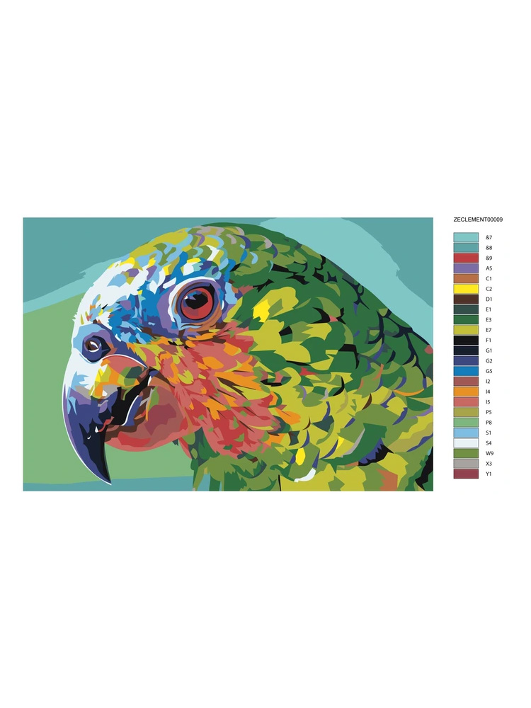 Parrot Multicolor - Painting by numbers