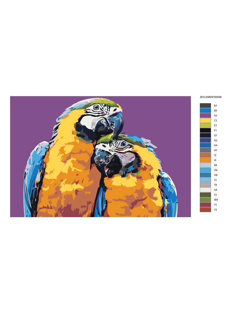 Sunset love parrots couple - Painting by numbers