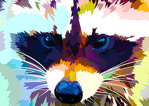 Raccoon - NL