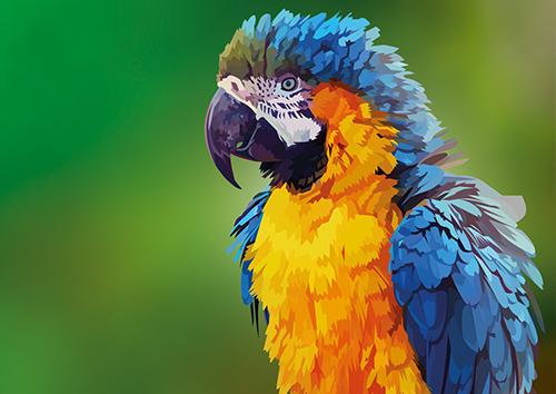 Parrot green bg