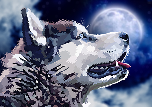 Husky Moonlight - US