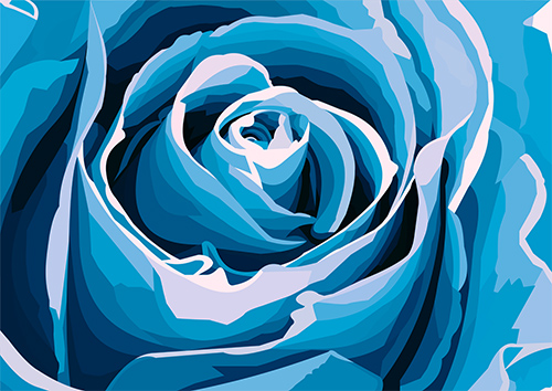 Blue Rose Closeup - NL