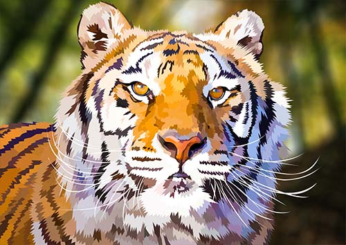 Tiger portrait - NL
