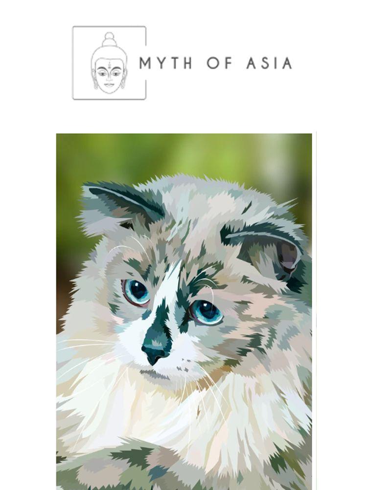 Gray White Long Haired Cat - Diamond painting