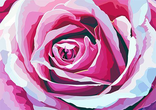 Rose Pink - NL