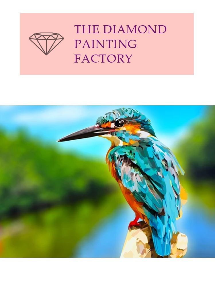 King fisher Diving master - Diamond painting