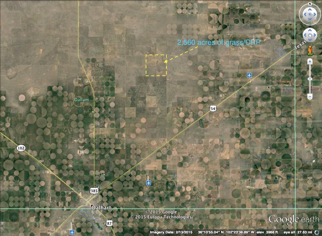 Rogers Trust, Dalhart, TX76