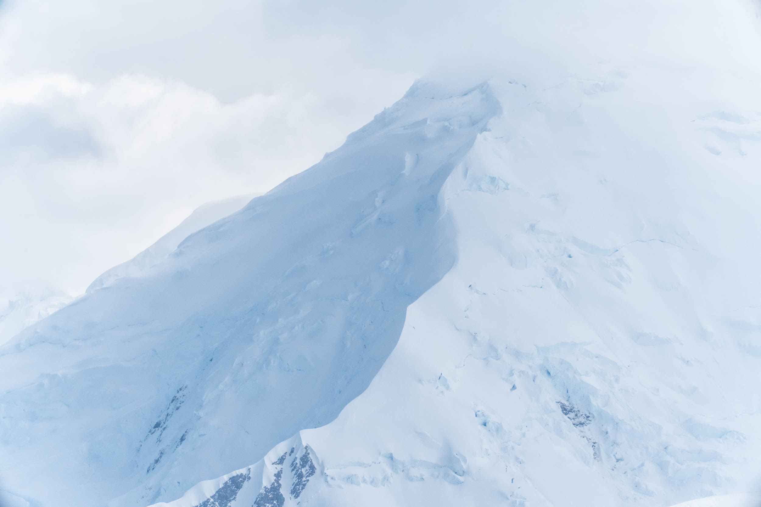 Antarctica Copyright Fraser Morton_DSC9036