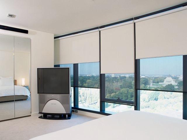 living room Dual Roller Blinds
