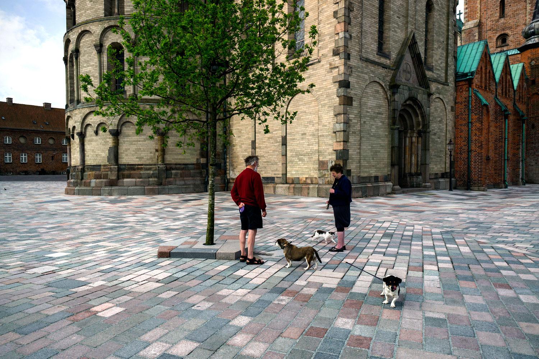 Et billede der viser to mennesker, der lufter deres hunde på domkirkepladsens store tilgængelige sammenhængende areal