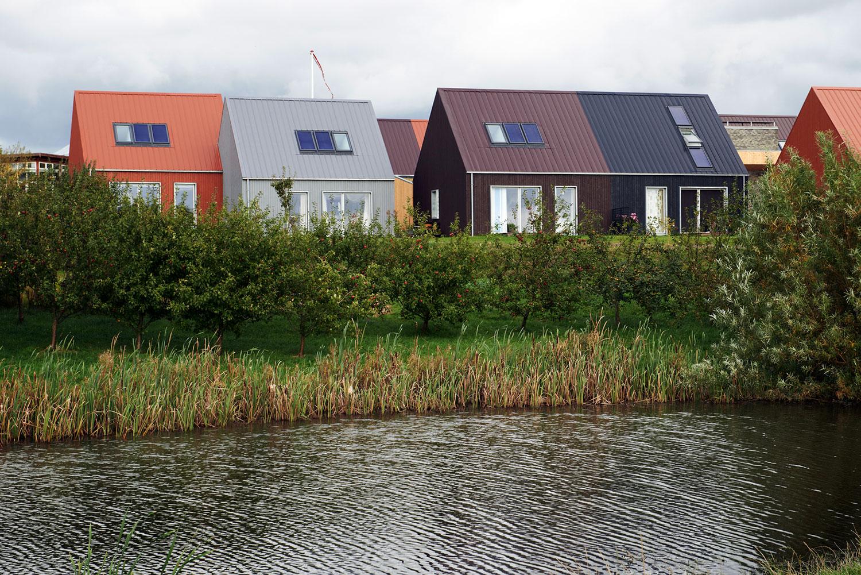 Billede af husene og den omkringliggende natur i andelssamfundet Hjortshøj. Husene er i farverne lilla, mørkeblå, orange og grå.