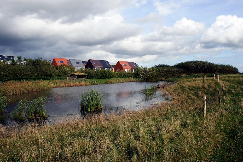 Et billede af Bogruppe 6 taget fra den anden side af søen. Vi oplever her, at boligerne er placeret midt i naturen, så lokationen understøttter den gennemgående sanselighed i Andelssamfundets Bogruppe 6.