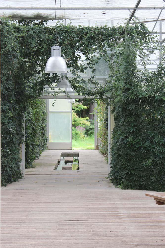 Et væksthus som er opdelt i flere grønne rum.