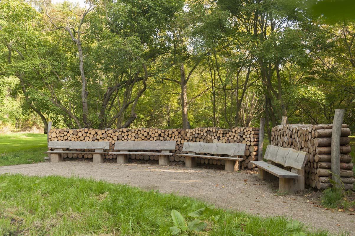 Skovrum hvor man kan sidde rundt om et bål.