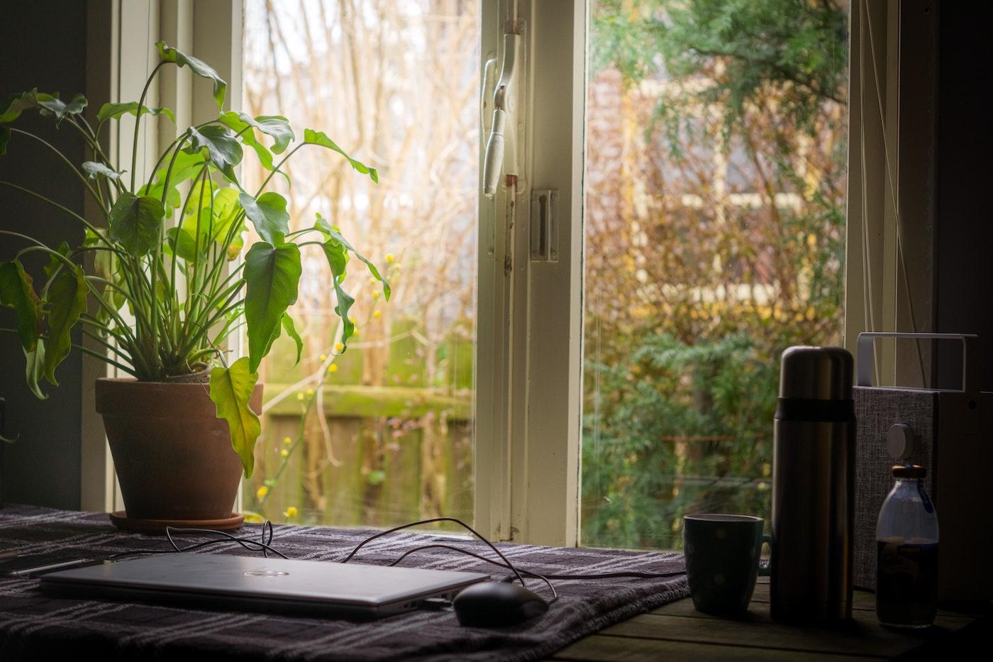 En hjemmearbejdsplads med skrivebordet foran et vindue