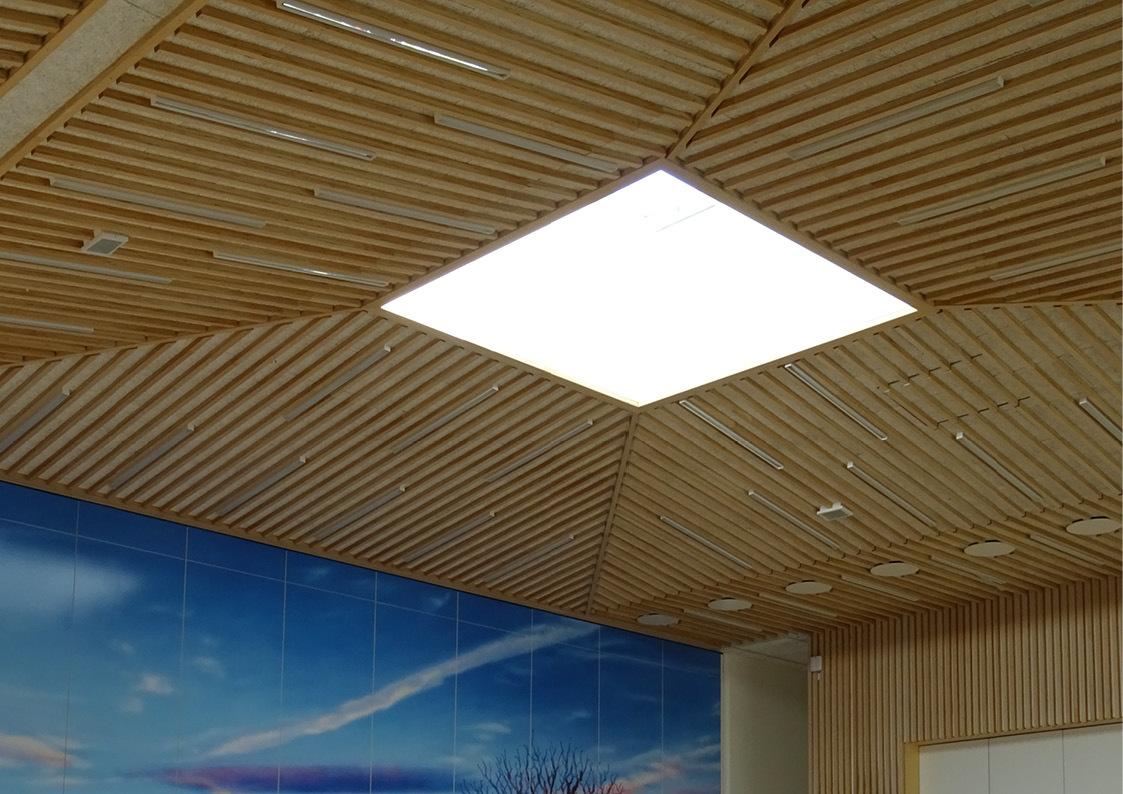 Et ovenlysvindue i træ i multifunktionssalen på Musholm ferie-, sport- og konferencecenter.