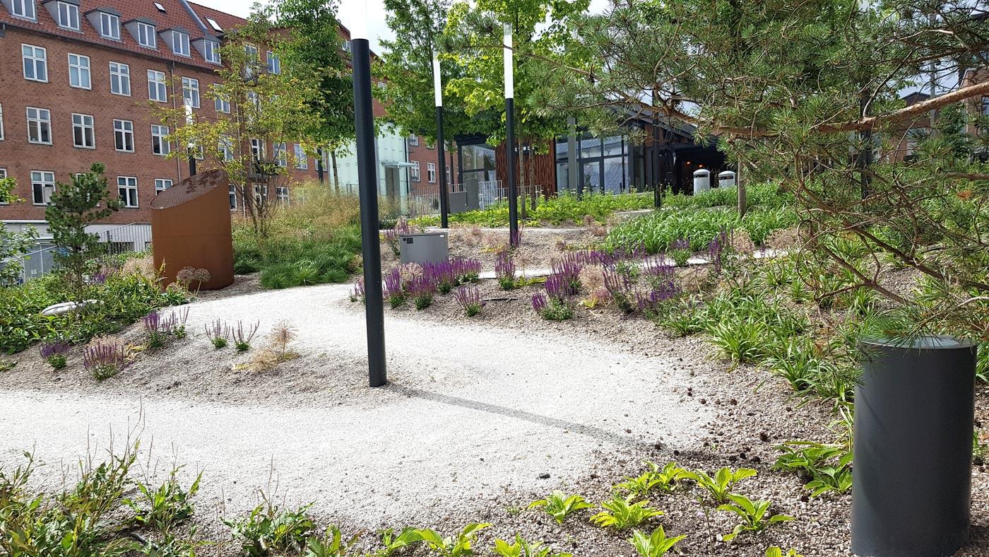 Grussti på Budolfi plads der snor sig op ad skråningen. Langs med stien vokser grønne planter og lavendel.