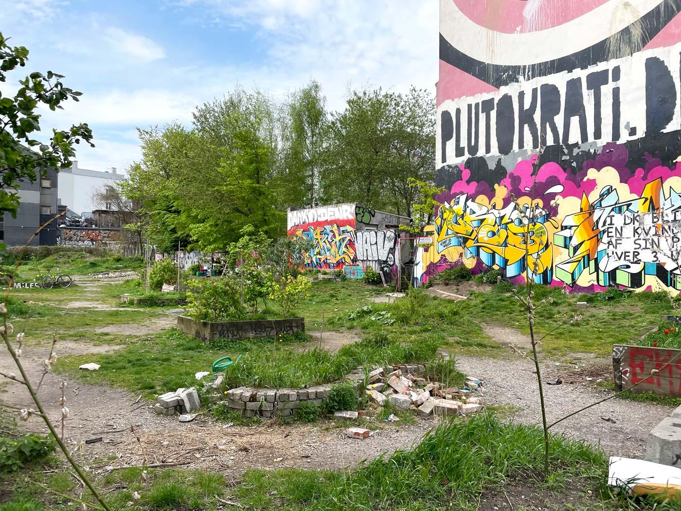"""Den tomme grund på Jagtvej 69. På husmuren står malet """"Plutokrati"""" med store bogstaver og små bede er opstået på pladsen."""