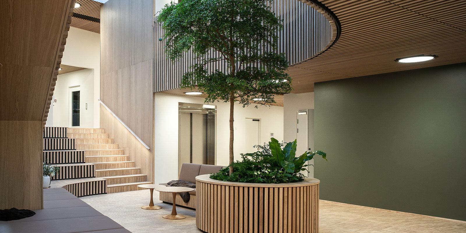 Rum med træpaneler på vægge, borde og bænke, elevator, trappe og et træ i midten