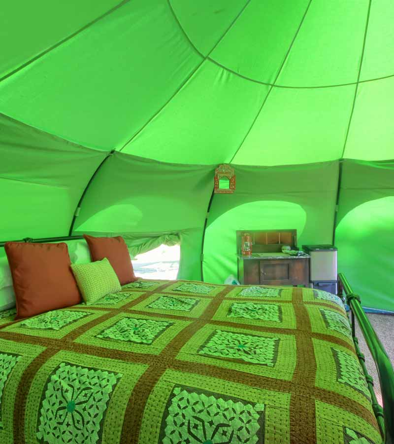 Inside a lotus belle tent showing a double bed and side table