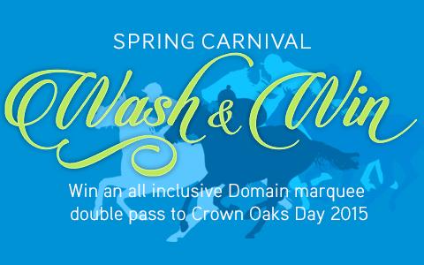 Spring Carnival - Wash & Win