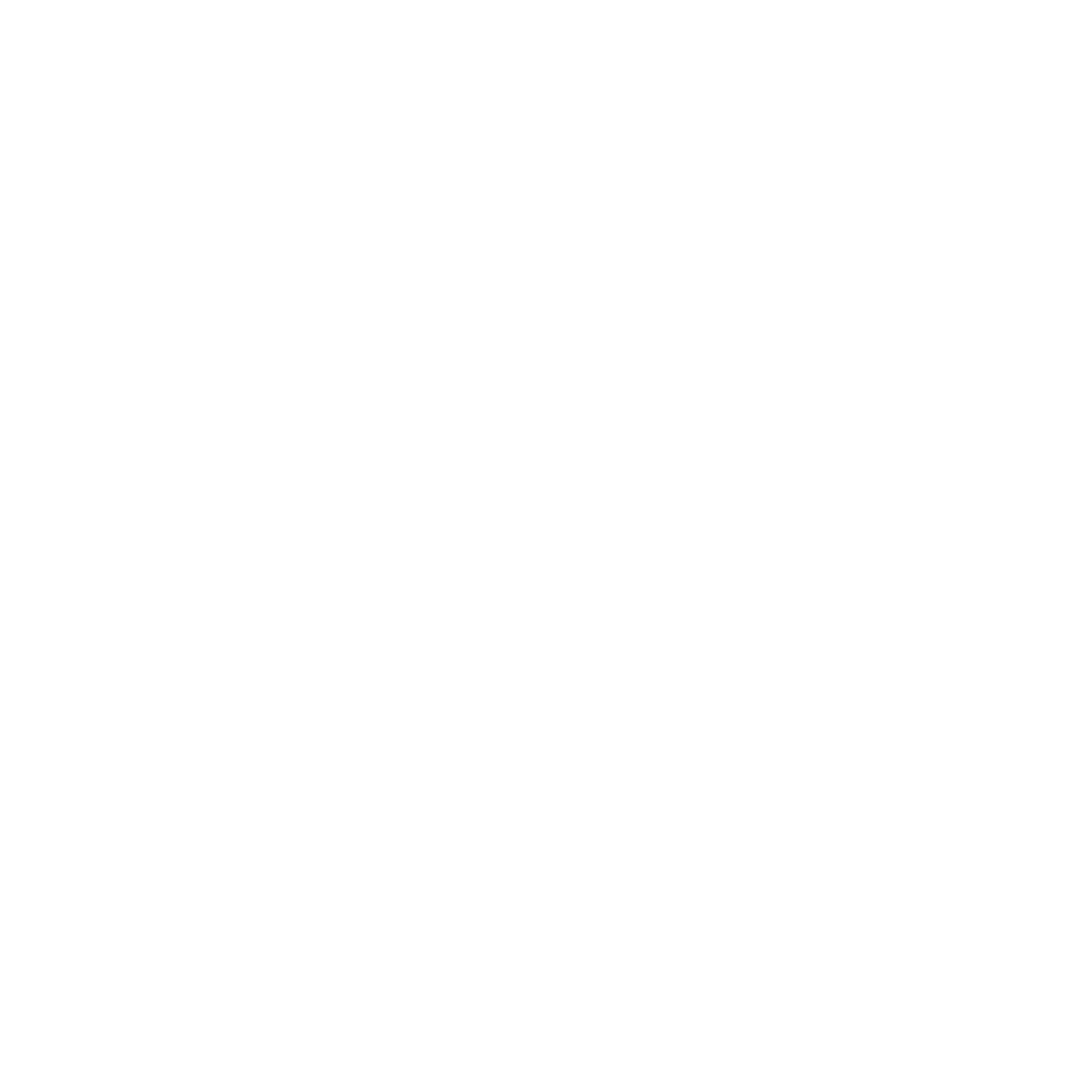Nur Medical Spa Logo