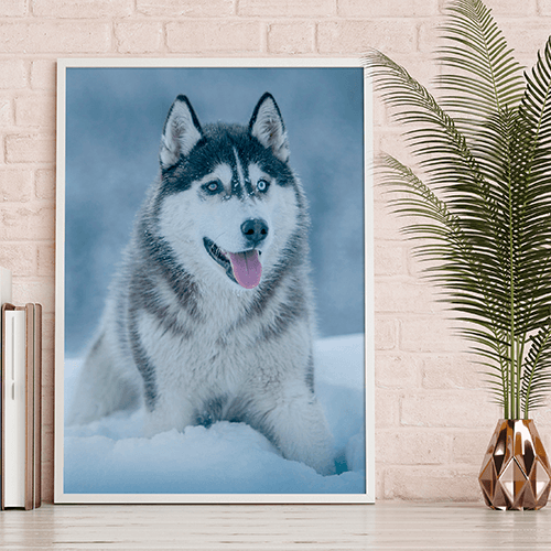 Wide Format Prints with Mounting Options