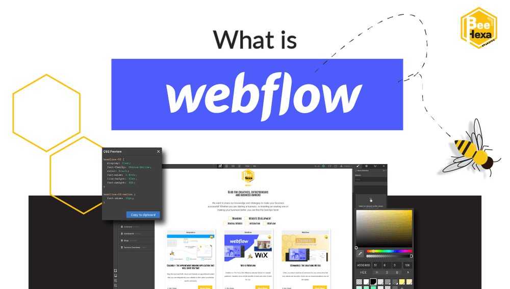 What is Webflow? How to build your website