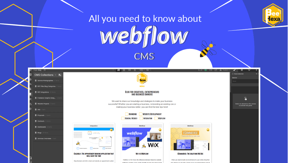 Webflow CMS: All you need to know to edit your website's content