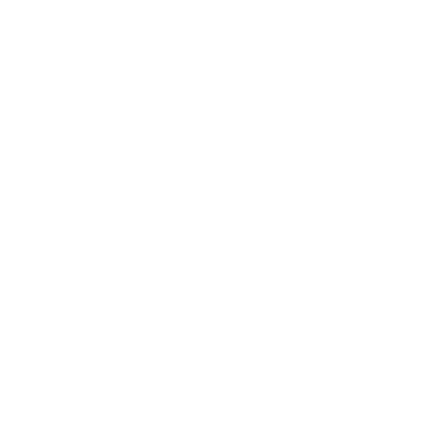 Bicycle Tire Icon