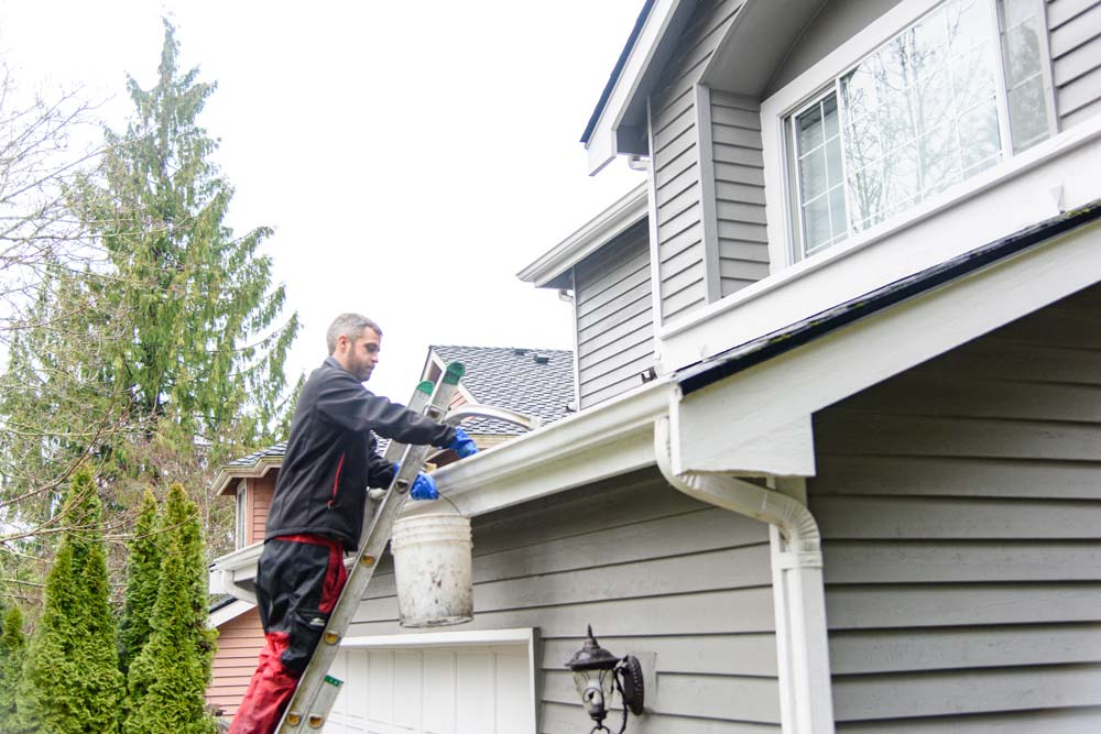 Cleaned gutters by Sky Power Wash