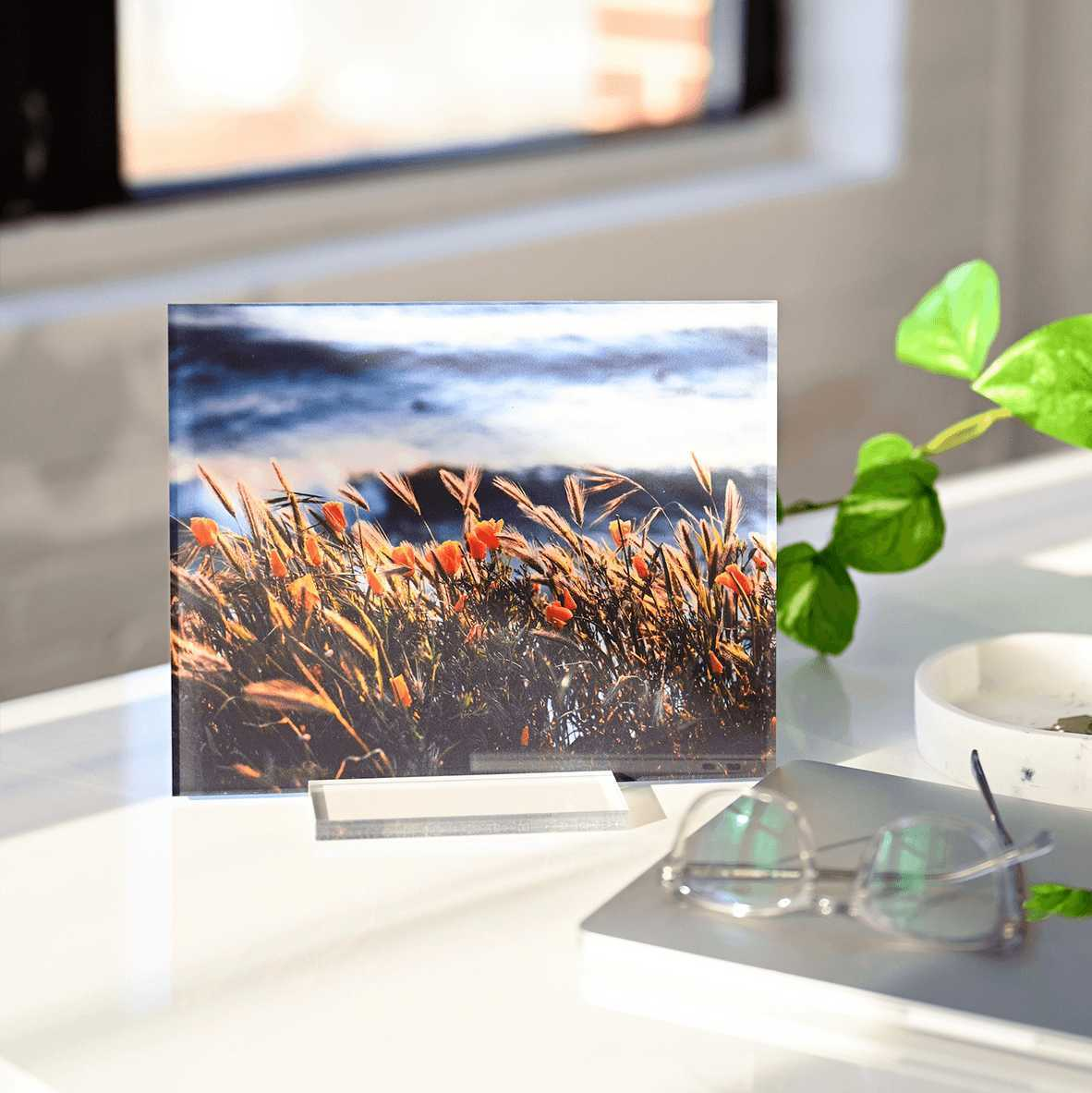 Make beautifully crafted acrylic photo print for your home decor