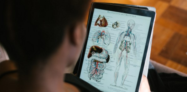 A student looking at a tablet device to study anatomy.