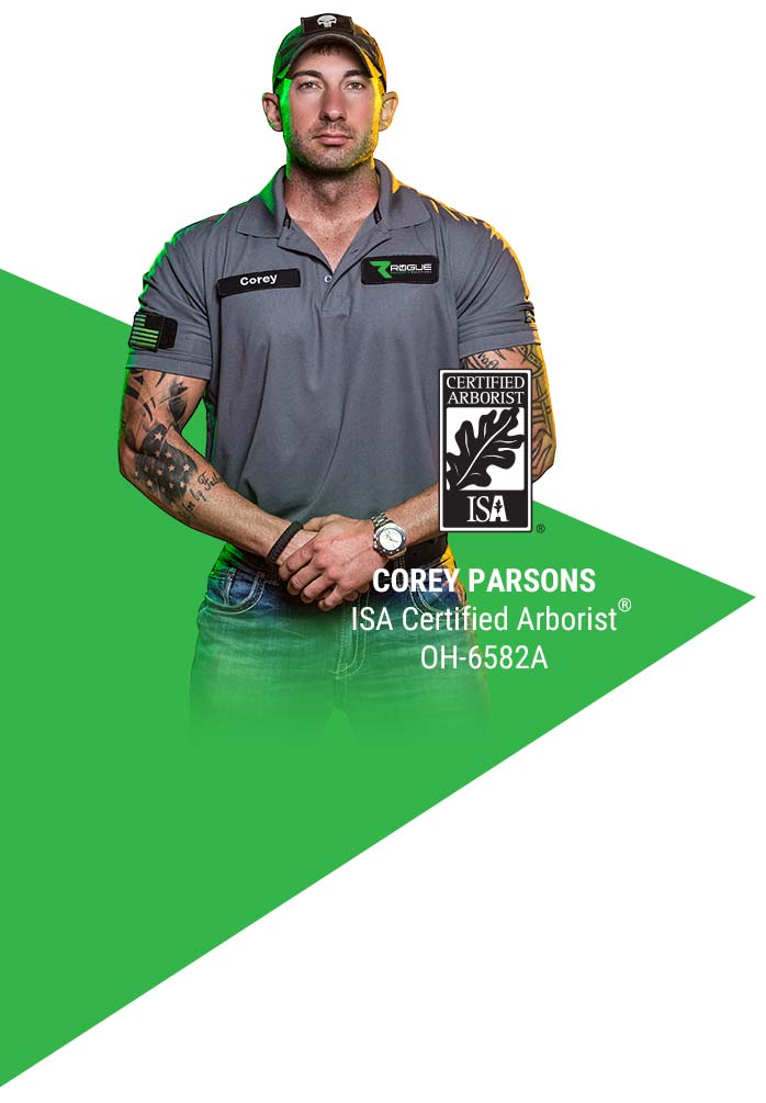 Corey Parsons - Rogue Property Solutions - Certified Arborist