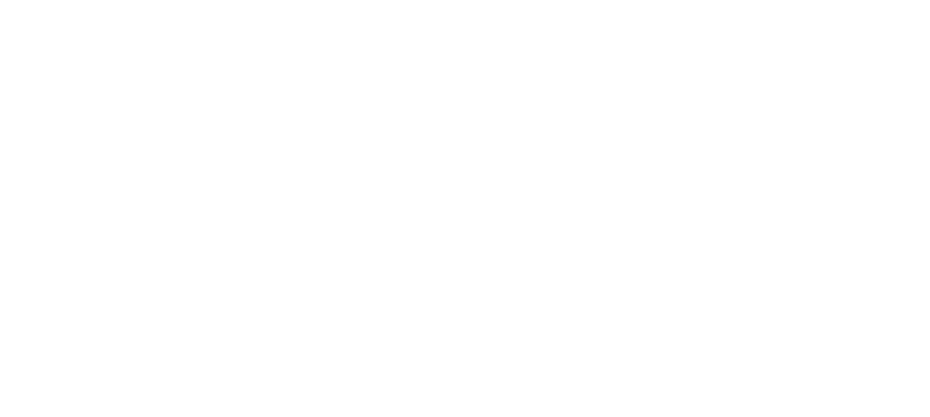 Payouts Network Logo