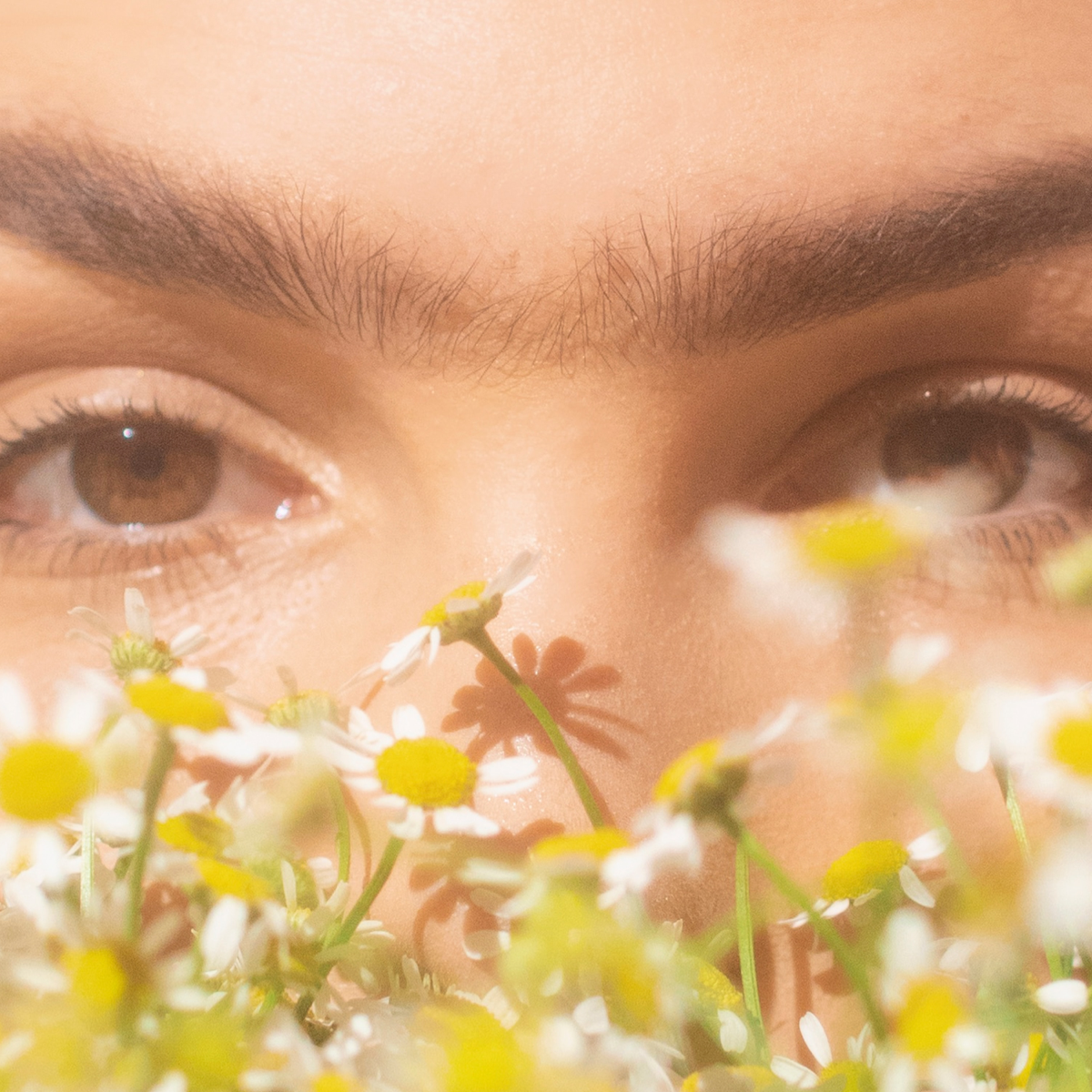 woman's face with unibrow positioned behind some flowers