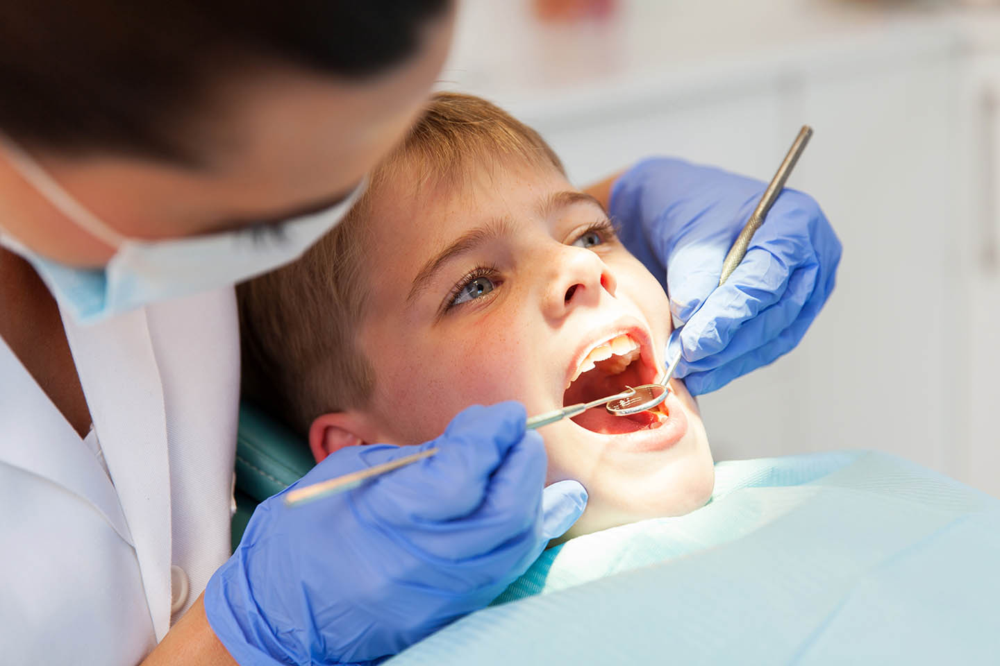 Dentist cleaning young boy's teeth