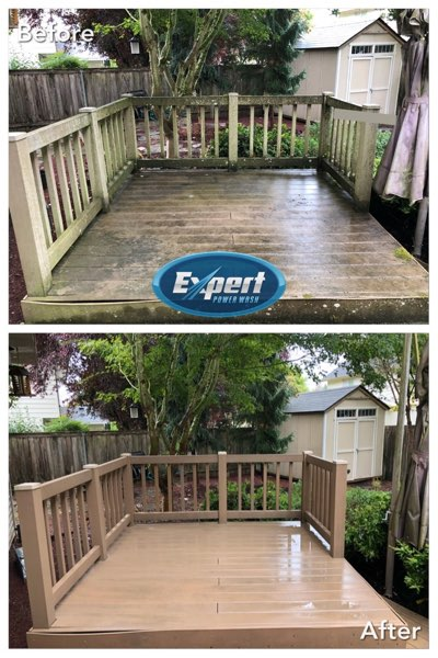 deck & fence cleaning project