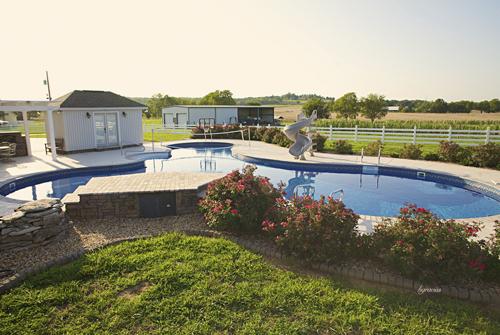 Roy Vaden Pools - Backyard Escape