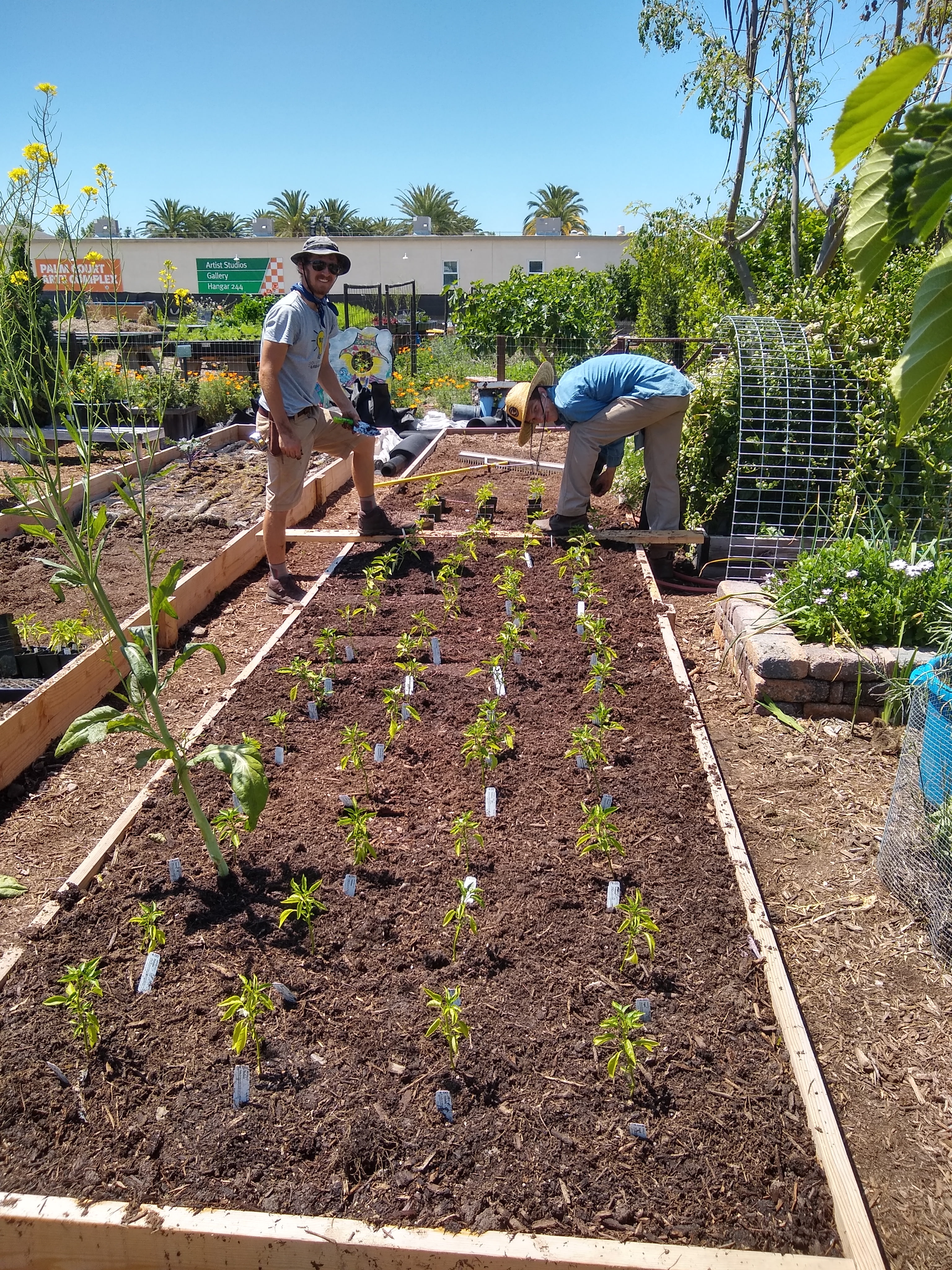 Farm and Food Lab Planting Garden