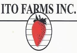 Ito Farms