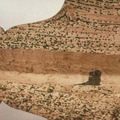 Traitement contre la vrillette et le capricorne du bois