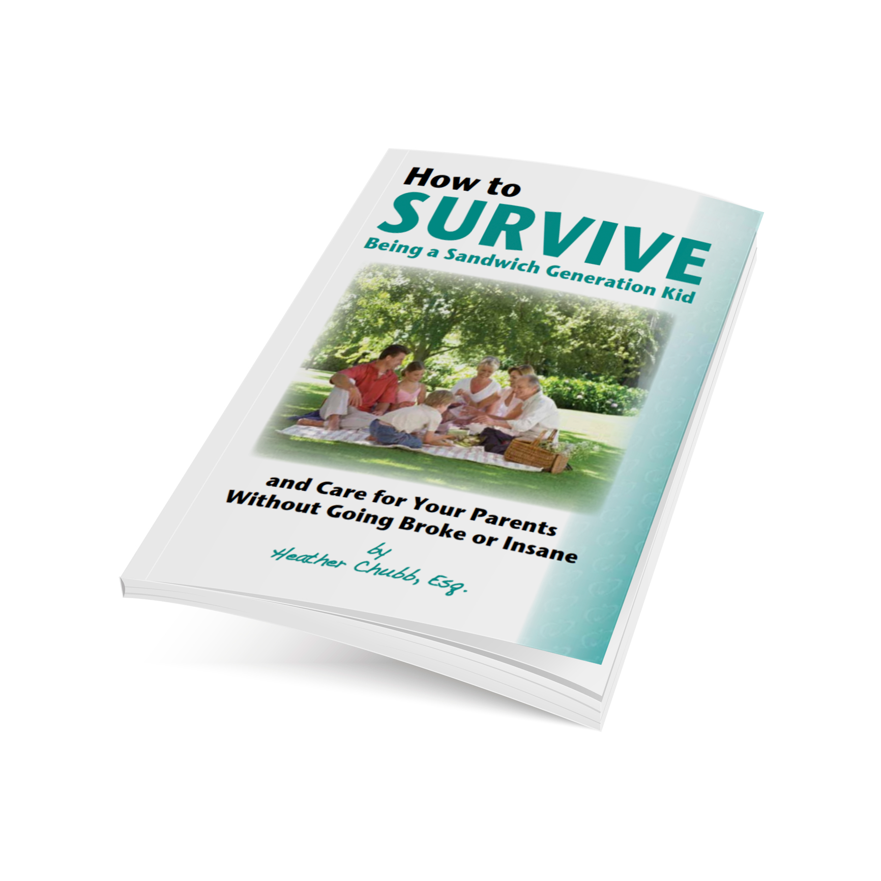 Sandwich Generation Ebook