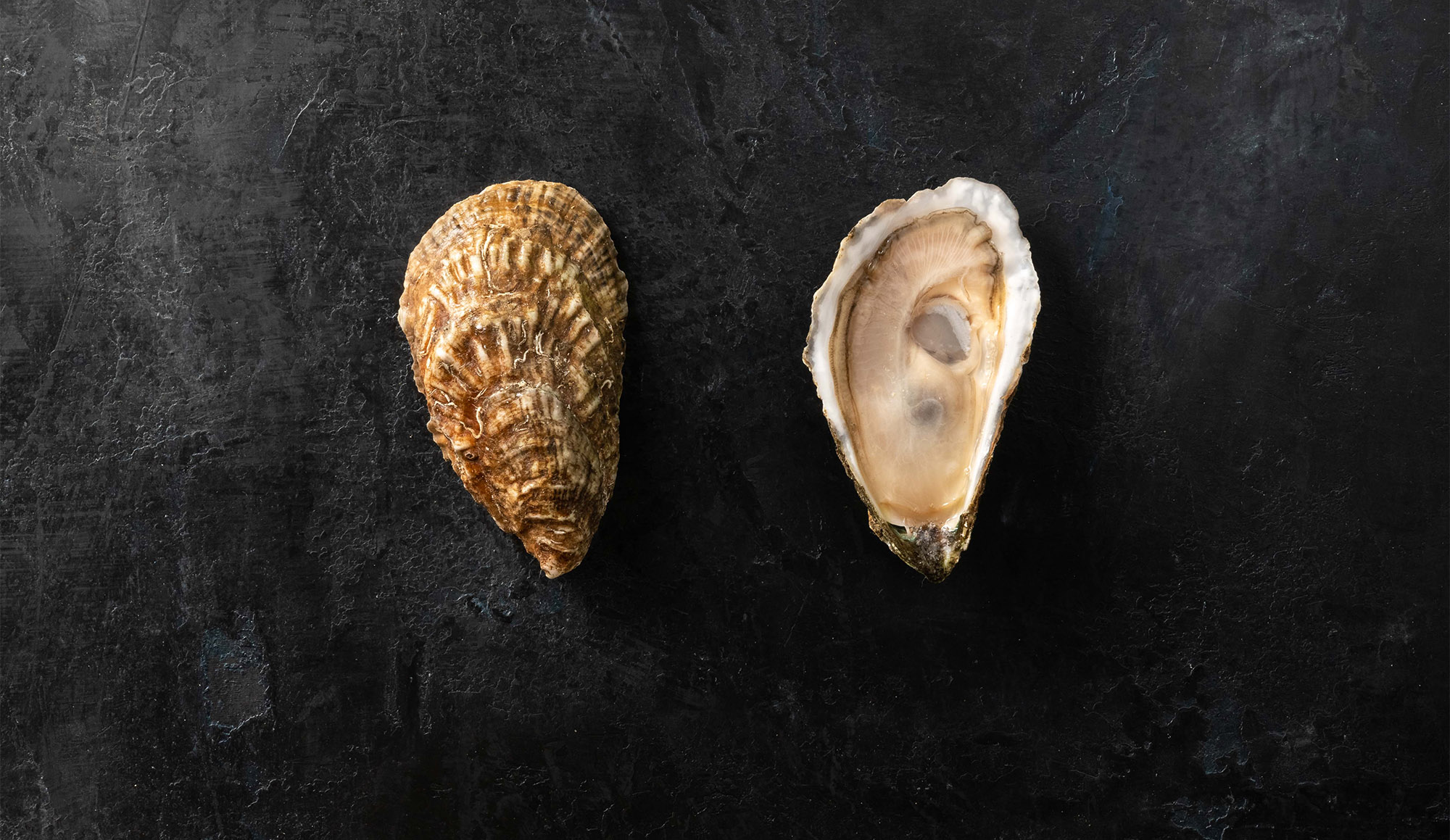 Wellfleet represents one of the more famous oyster provenances in the world, and they've been harvesting oysters here since the early 1600's.