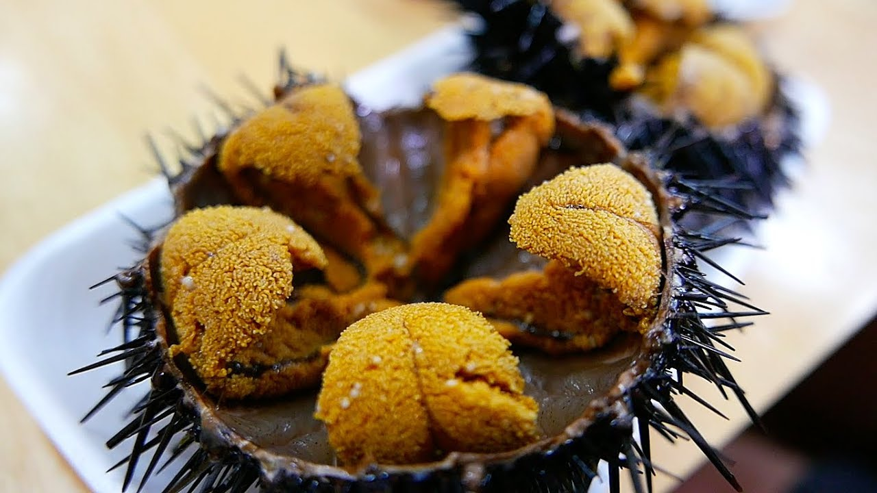It is widely held that our local Red Sea Urchins, harvested within sight of the entire SoCal coast, is considered the finest in the world.