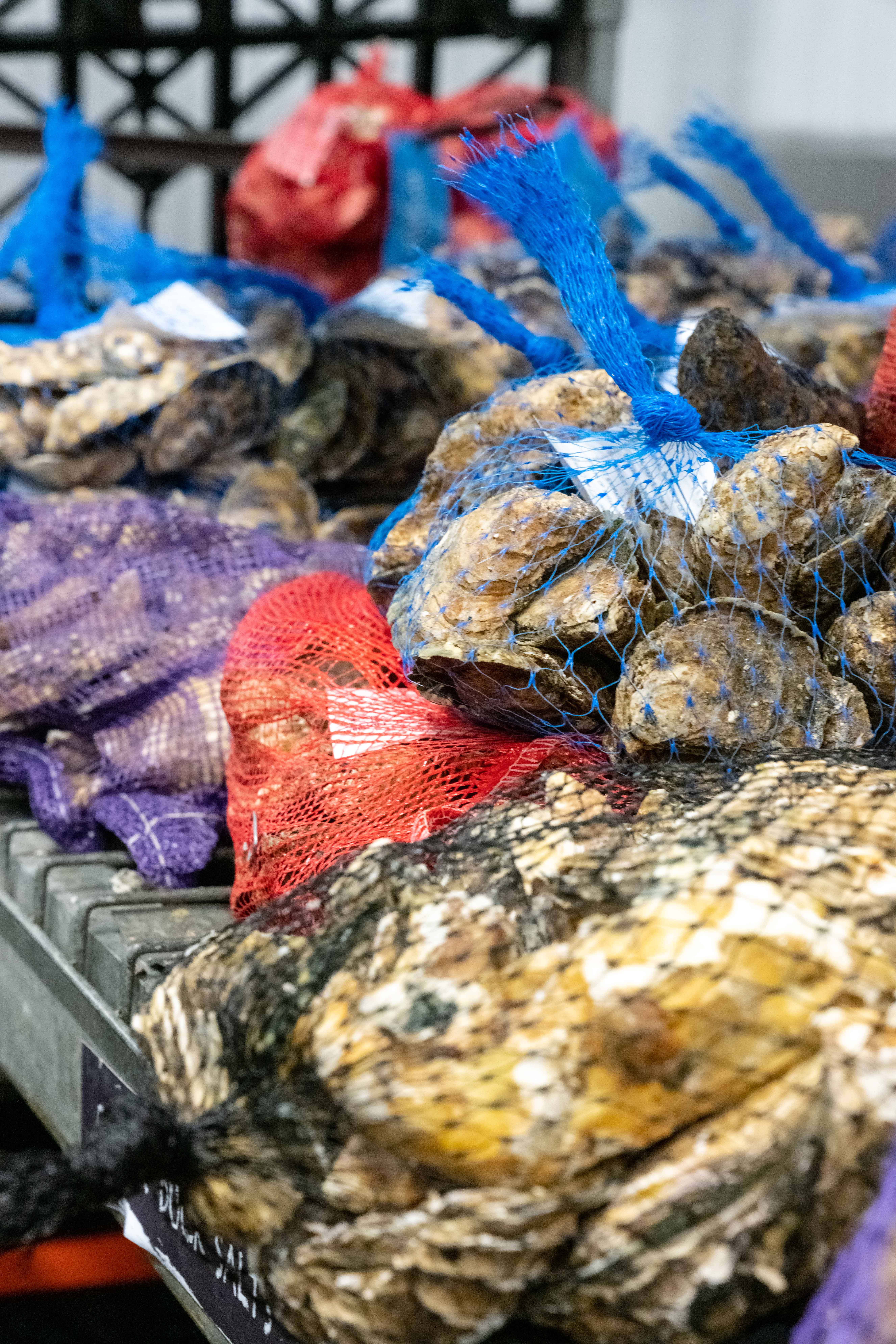 Blue Pool Oyster come from Hama Hama Farm in Washington's Hood Canal.