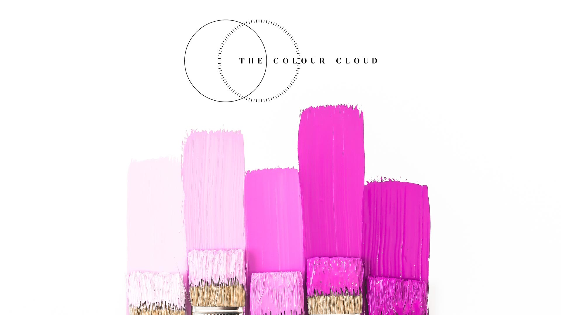 Color Inspiration for Business