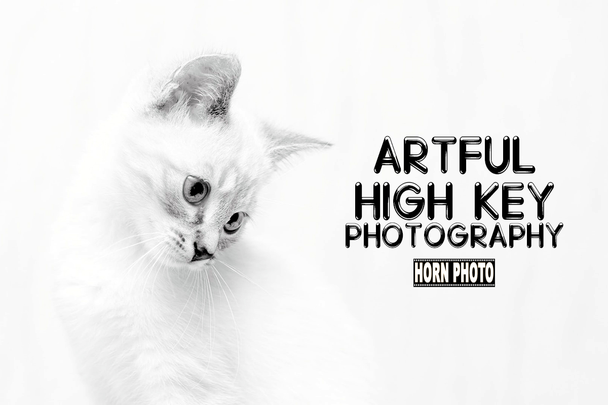 ARTFUL HIGH KEY PHOTOGRAPHY