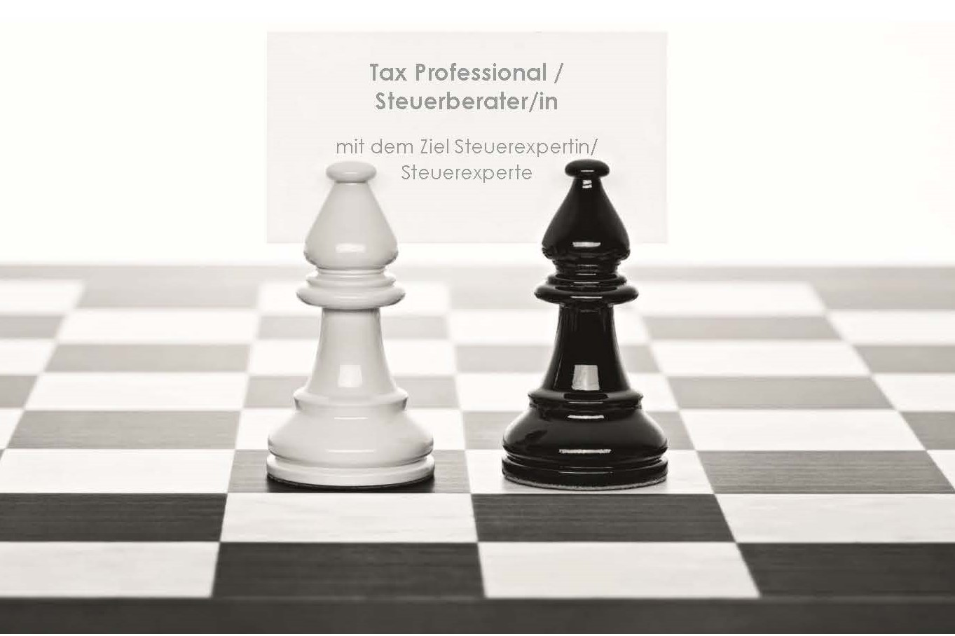Tax Professional / Steuerberater/in